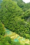 Semuc Champey, Guatemala. Semuc Champey limestone national parc, Guatemala Stock Photography