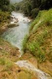 Semuc Champey Guatemala Royalty Free Stock Photo