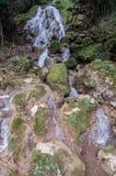 Semuc Champey Guatemala Stock Images