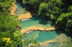 Semuc Champey, Lanquin, Guatemala, Central America Arkivfoton