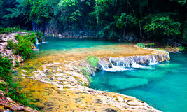 Semuc Champey waterfall Stock Image