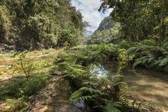 Semuc Champey waterfals in Guatemala Royalty Free Stock Photo