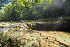 Semuch-champey river Royalty Free Stock Image