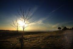 Sen eftermiddag blå himmel Arkivbilder