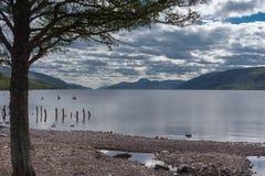 Sen eftermiddag för Loch Ness som ser västra Royaltyfri Foto