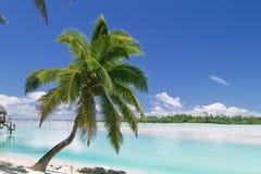 sen na plaży tropikalnym raju Zdjęcia Stock