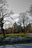 Sen nedgång i en parkera Svartvit himmel fotografering för bildbyråer