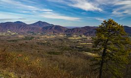 Sena Autumn View av gåsliten vikdalen och den blåa Ridge Mountains arkivfoto