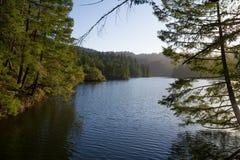 Eftermiddagsolsken på en lake i Kalifornien royaltyfri bild