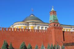 Senaatspaleis en de Senaatstoren in Moskou het Kremlin Stock Fotografie