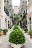 Row of bush between townhome. Senado Square, Macau - October 23, 2016 : Senado square is one of the most popular place to travel at Macau. The city is mixed with Stock Photos