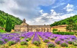 Senanque修道院,一个主要旅游目的地在普罗旺斯,法国 免版税库存照片