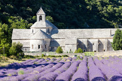 Senanque abbey Stock Photography