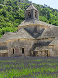 Senanque abbey Royaltyfria Bilder