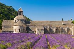 Senanque abbey Royaltyfri Fotografi