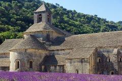 Senanque abbey Arkivbilder