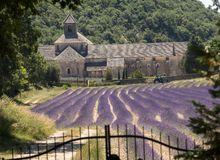 Senanque Abbey or Abbaye Notre-Dame de Senanque with lavender field in bloom, Gordes, Provence. France Royalty Free Stock Image