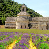 Senanque Abbey, France Stock Image