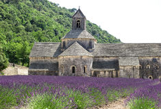 Senanque abbey with lavender field, landmark of Provence Royalty Free Stock Image