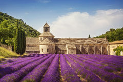 Senanque Abbey. With lavender fields Stock Photos