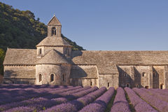 Senanque abbey Royalty Free Stock Image
