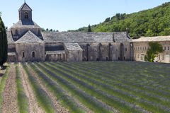 Senanque Abbey. A lovely, must-see, place to visit in Southern France royalty free stock photo