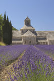 Senanque Abbey (Provence, France) Royalty Free Stock Photos