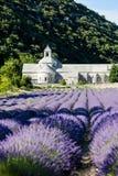 Senanque abbey, Provence, France Stock Photography
