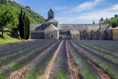 Senanque Abbey Provence France Arkivfoton