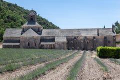 Senanque Abbey Provence France Arkivbilder