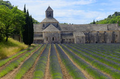 Senanque Abbey in Provence Royalty Free Stock Photos