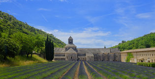 Senanque Abbey in Provence Stock Photography
