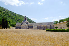 Senanque Abbey with wheat filed Stock Image