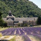 Senanque abbotskloster eller Abbaye Notre-Dame de Senanque med lavendelfältet i blom, Gordes, Provence Arkivbild
