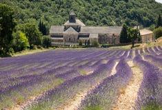 Senanque abbotskloster eller Abbaye Notre-Dame de Senanque med lavendelfältet i blom, Gordes, Provence Royaltyfri Foto