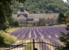 Senanque abbotskloster eller Abbaye Notre-Dame de Senanque med lavendelfältet i blom, Gordes, Provence Royaltyfri Bild