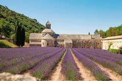 Senanque abbotskloster i Provence med att blomma ror lavendelblommor Royaltyfri Foto