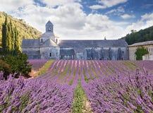 Senanque abbotskloster i Vaucluse, Frankrike Arkivbild
