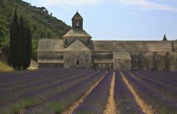 Senanque abbotskloster med lavendel Royaltyfri Fotografi