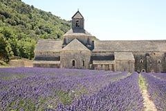 Senanque abbotskloster med lavendel Arkivbilder