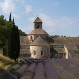 Senanque abbotskloster och lavendelfält, Provence, Frankrike Arkivfoto