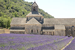 Senanque-Abtei mit Lavendel Lizenzfreies Stockfoto