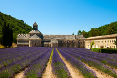 Senanque Abtei mit Lavendelfeld Stockbild