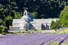 Senanque Abtei, Provence Lizenzfreie Stockfotografie