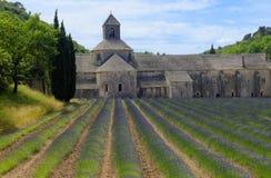 Senanque-Abtei in Provence Lizenzfreie Stockfotos