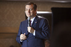Senator Ted Cruz royalty-vrije stock foto