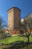 Senatorial Tower (Lubranka) Stock Photography