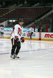 Senators Jogador de Ottawa Imagem de Stock Royalty Free