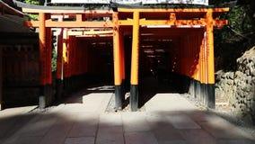 Senbon Torii Fushimi Inari zbiory wideo