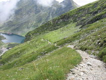Senda para peatones de la montaña Fotografía de archivo